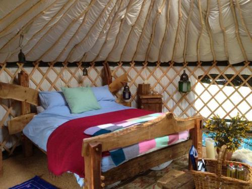 esk yurt IMG_2687